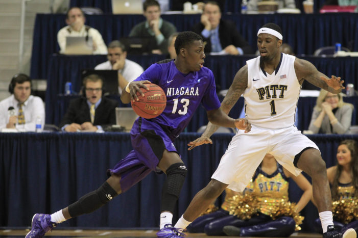 Niagara's Matt Scott named MAAC Basketball Player of the Week