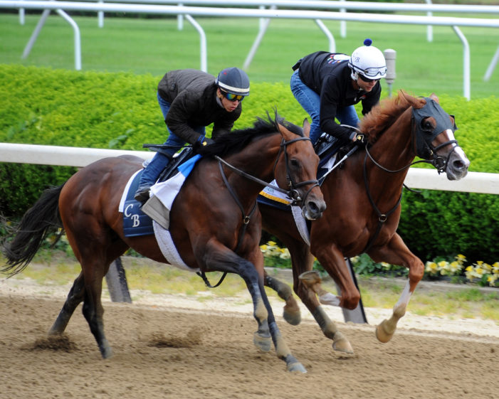 Twisted Tom looking for smoother ride in New York Derby