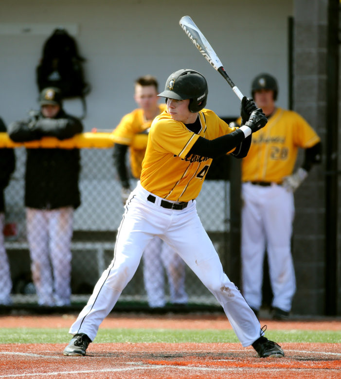 Patience paying dividends for Tribunes