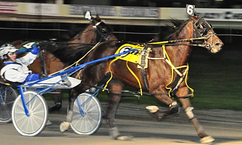Foiled Again, harness racing's richest horse, at Batavia on Friday