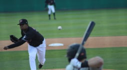 Muckdogs fall, 9-3 to West Virginia