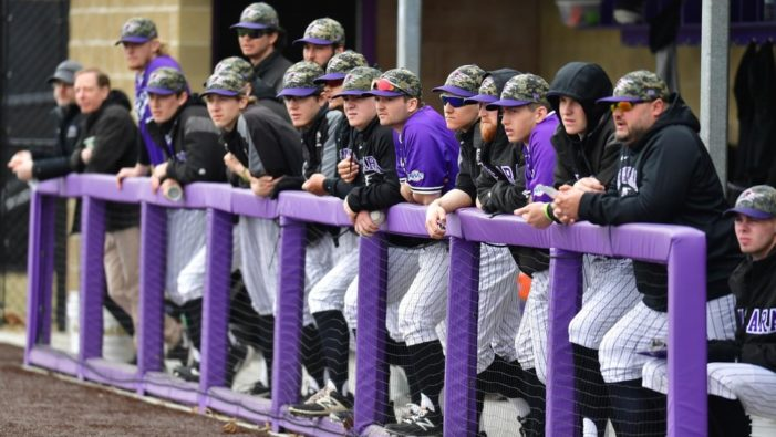 Niagara adds Stephen Leonetti to baseball coaching staff