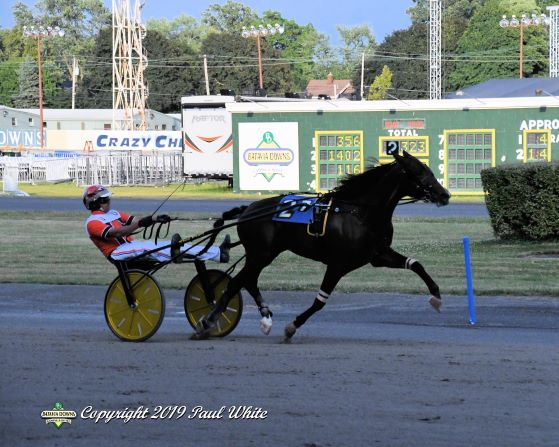 Harness racing's demise greatly exaggerated