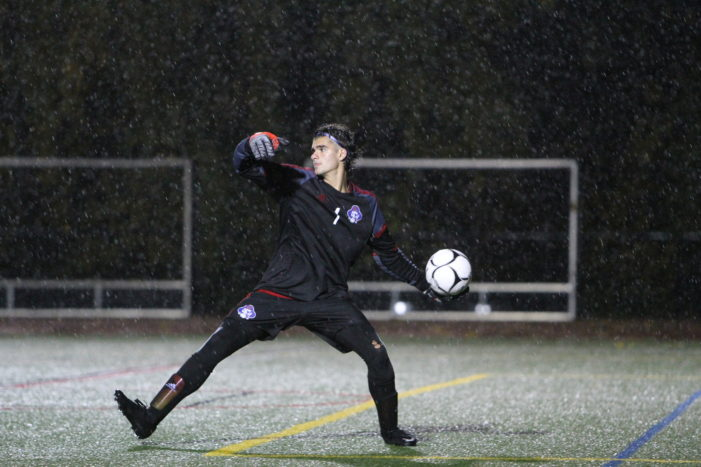 Nesser leads Fairport to fourth state semi-final appearance this decade