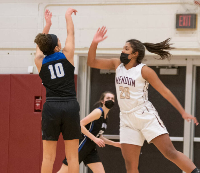 Luxury Vacation Rentals Friday Wrap: Johnson reaches career milestone for Avoca/Prattsburgh; York takes down undefeated Pavilion for Girls' Class C2 title